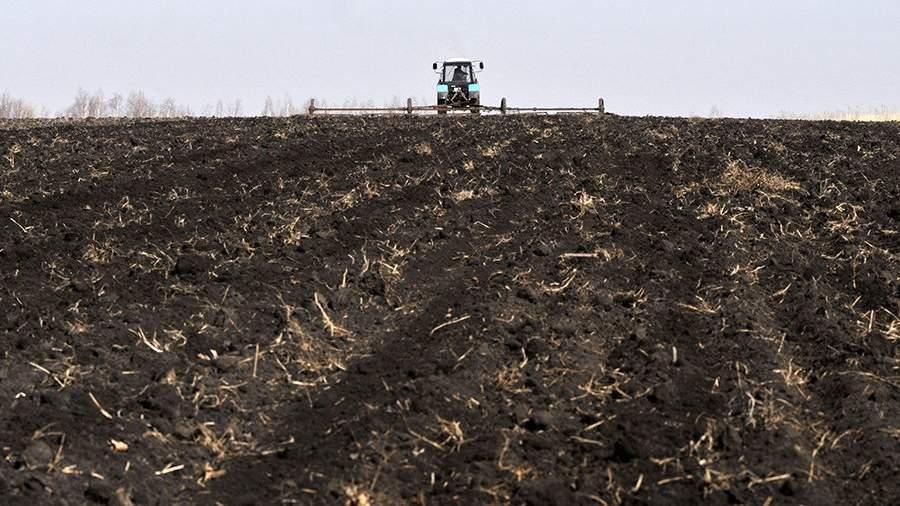 Подготовка к севу на полях в Воронежской области