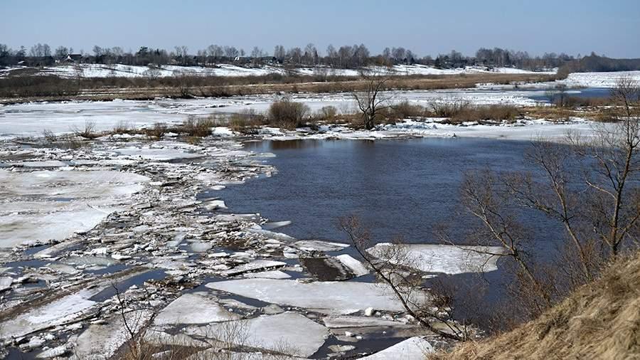 Ледоход на реке Шелонь вблизи деревни Егольник Солецкого района Новгородской области
