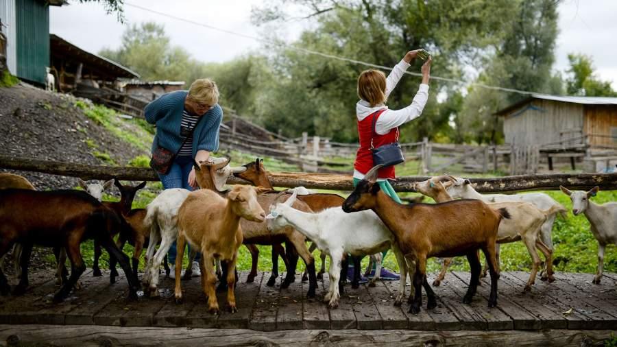 Туристы на базе отдыха «Усадьба Три А» в селе Солоновка в Алтайском крае