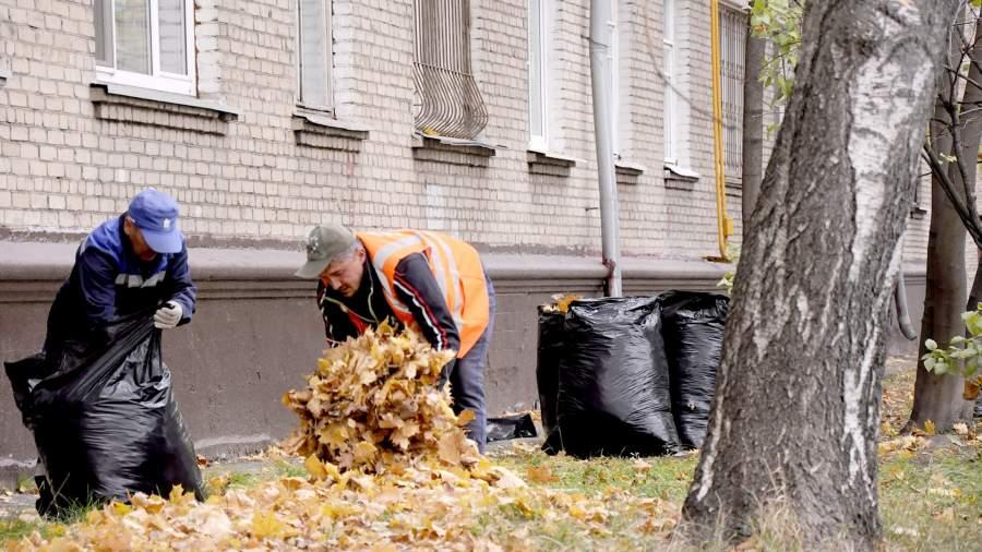 жкх дворник осень листья