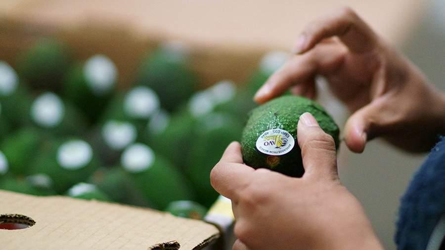 авокадо в руках у покупателя